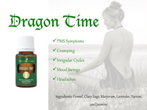 Dragon Time Blurb
