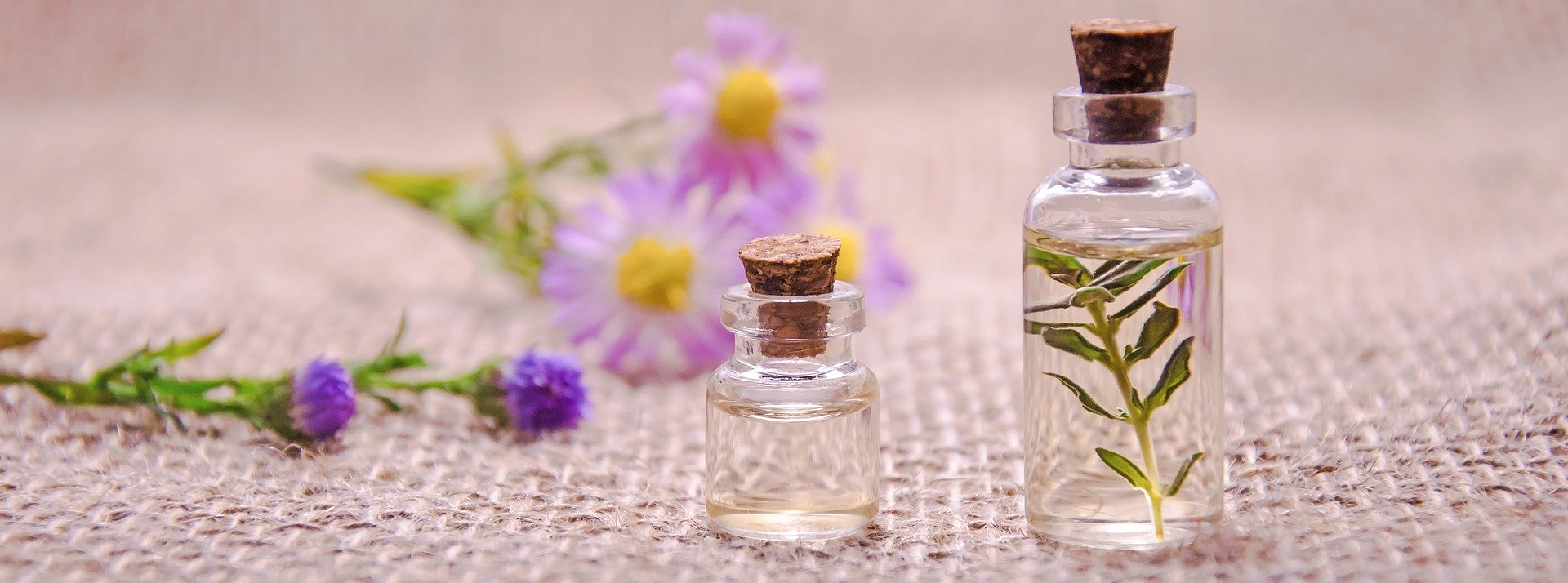 The Science Behind the Power of Essential Oils
