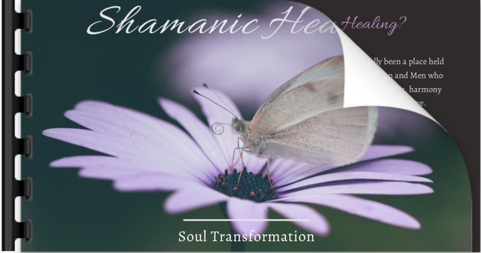 Shamanic Healing Video