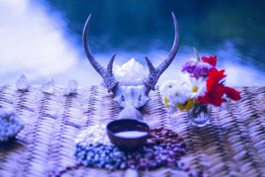 Shamanic Distance Healing